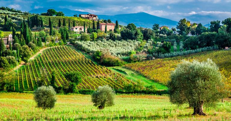 Landskab i Toscana, italien